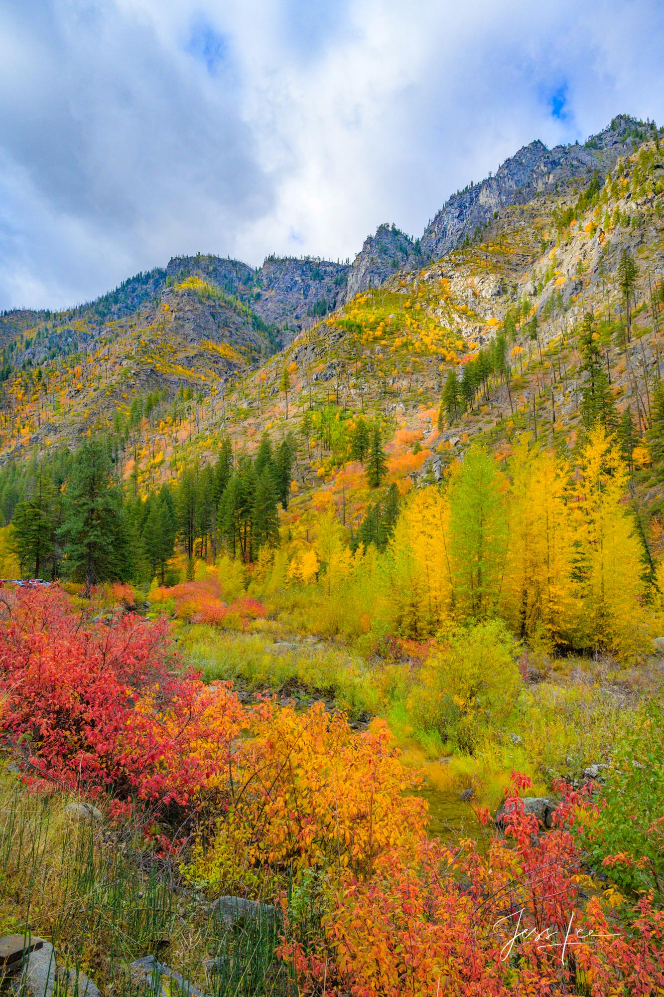 Mountains, trees, snow, fall, color,, photo