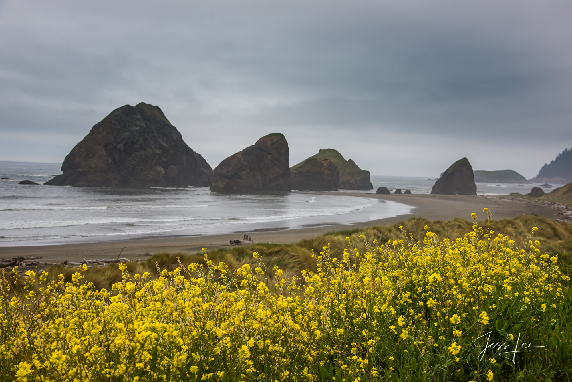 Fine Art Limited Edition Photography of Oregon. Oregon Seascape beaches.This is part of the luxurious collection of fine art...