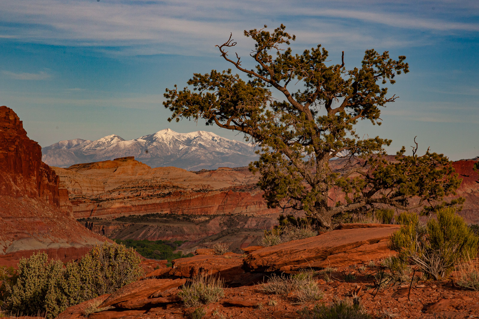 Limited Edition of 50 Fine Art Prints Wind Blown Perfection : Capitol Reef, San Rafael Swell and the Waterpocket Fold are some...