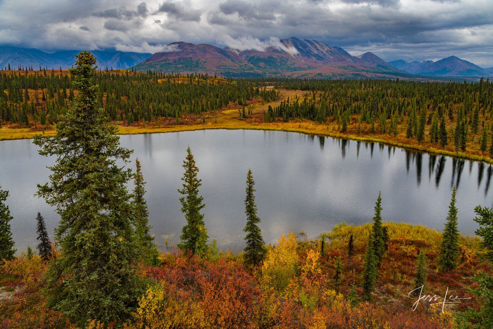 Alaskan range adjacent to Denali National Park changing colors with the onset of autumn