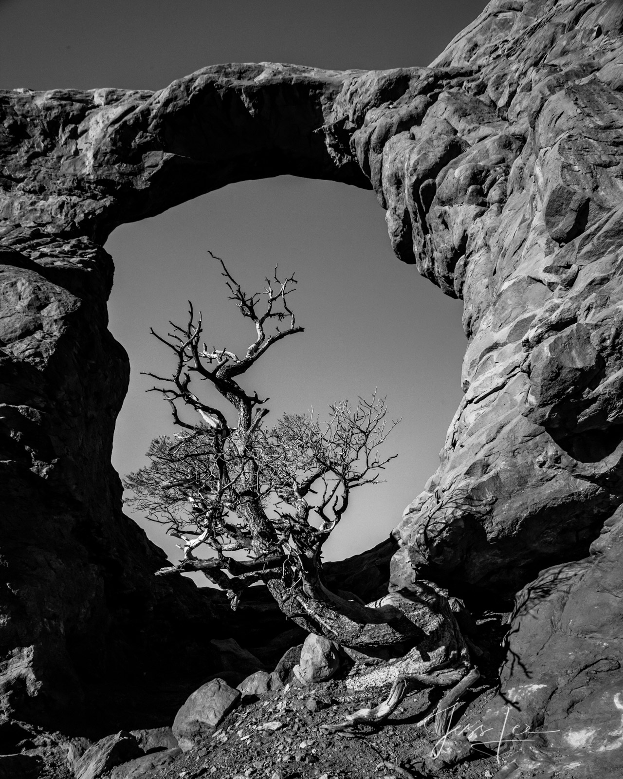 FINE ART LIMITED EDITION BLACK AND WHITE PHOTOGRAPHIC PRINT OF ARCHES NATIONAL PARK Arches Landscape photo print of Utah Landscape...