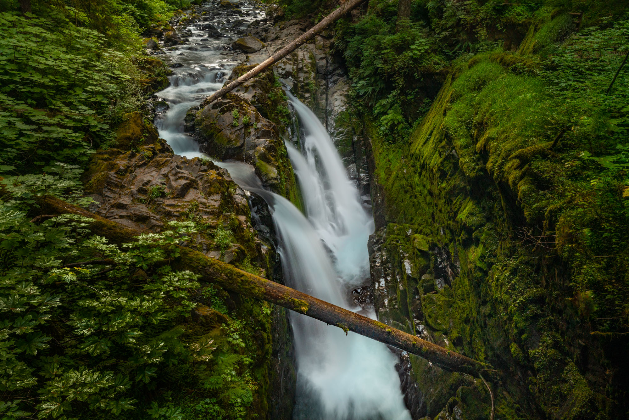 Sol Duc Falls, Olympic NP limited edition fine art print