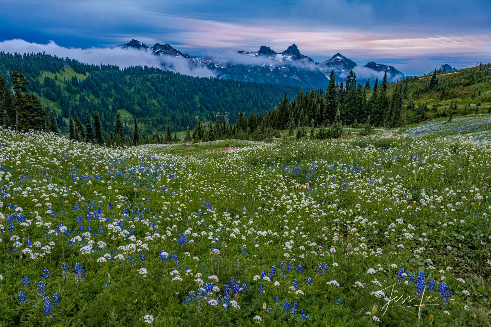 Beautify  your space  with Jess Lee's limited edition photography print, Blue Hour, from his Mount Rainier Gallery . Order yours...