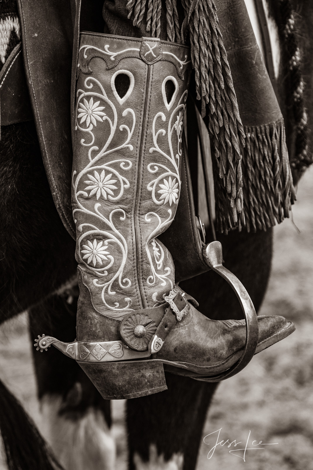 Fancy Boot, Spur, and stirrup