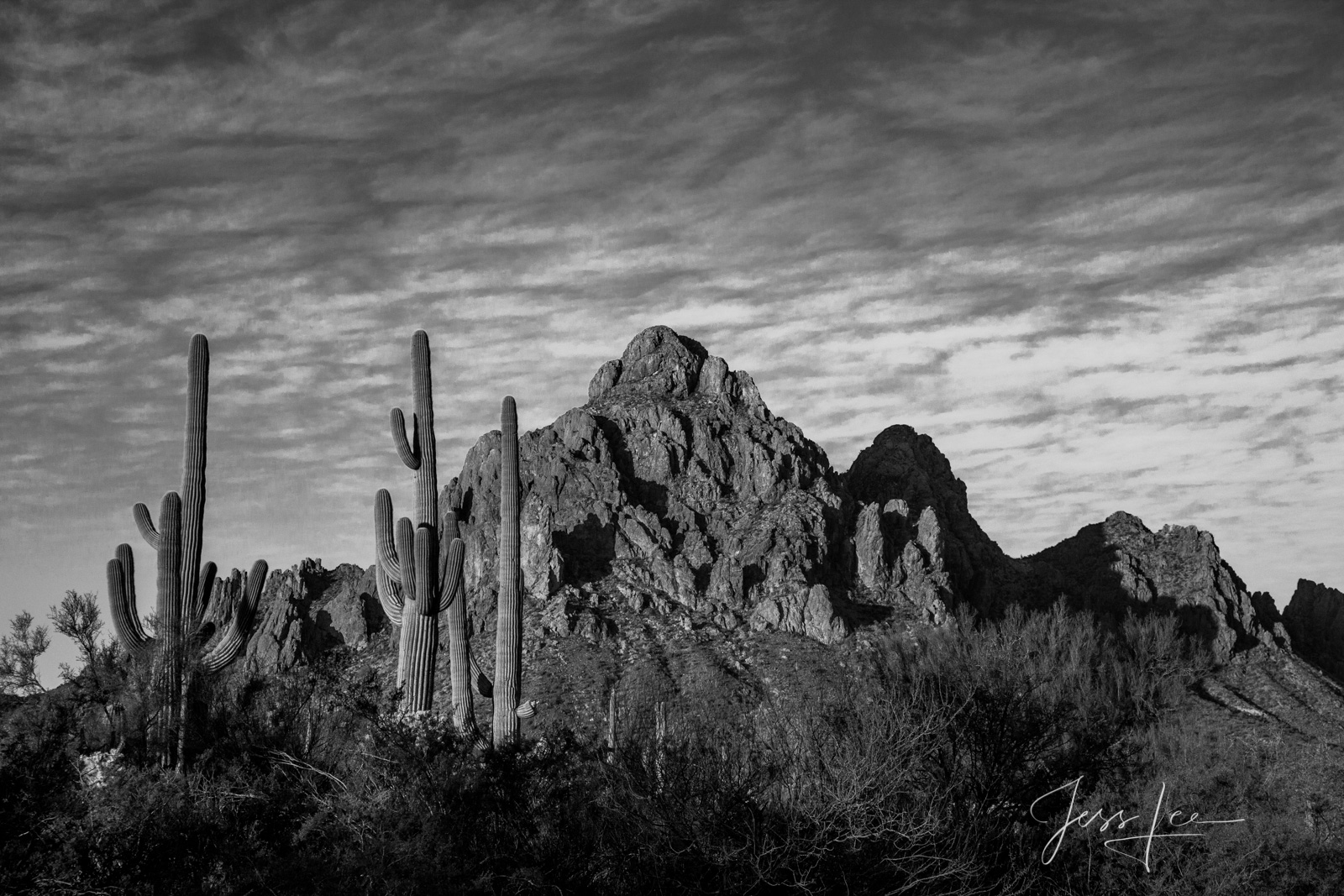 Bring home this classic style Black and White, Desert Southwest,  Fine Art Print. A Limited Edition of 50.  Copyright © Jess...