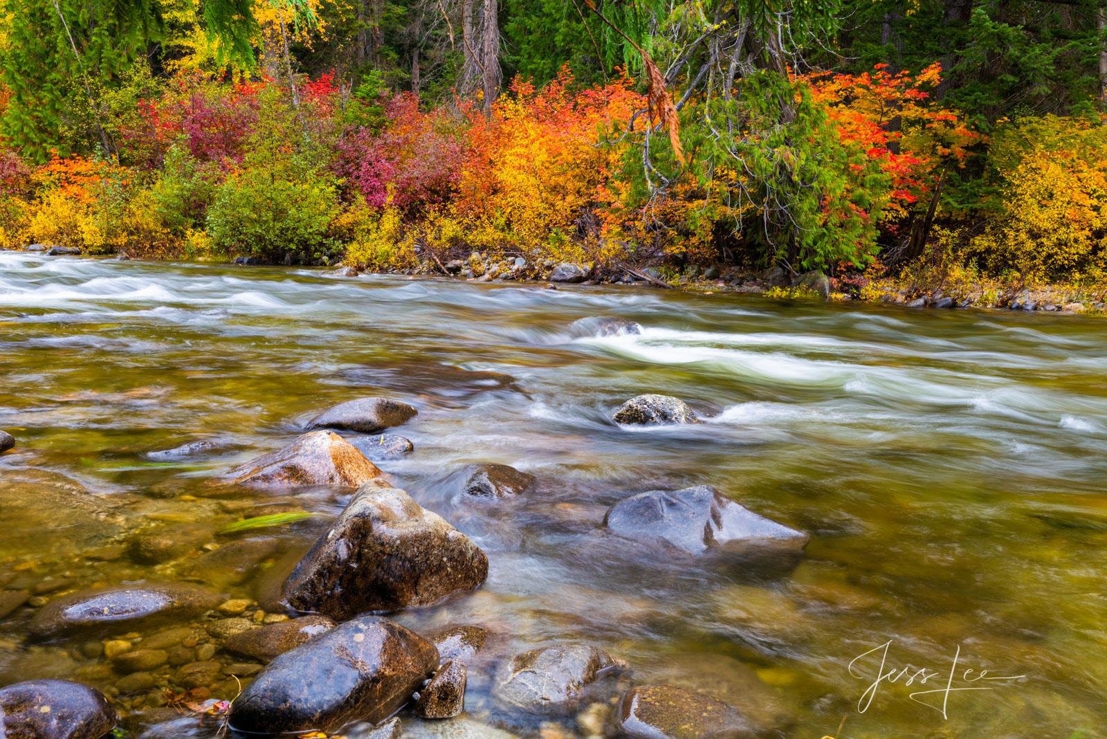 fall color creek