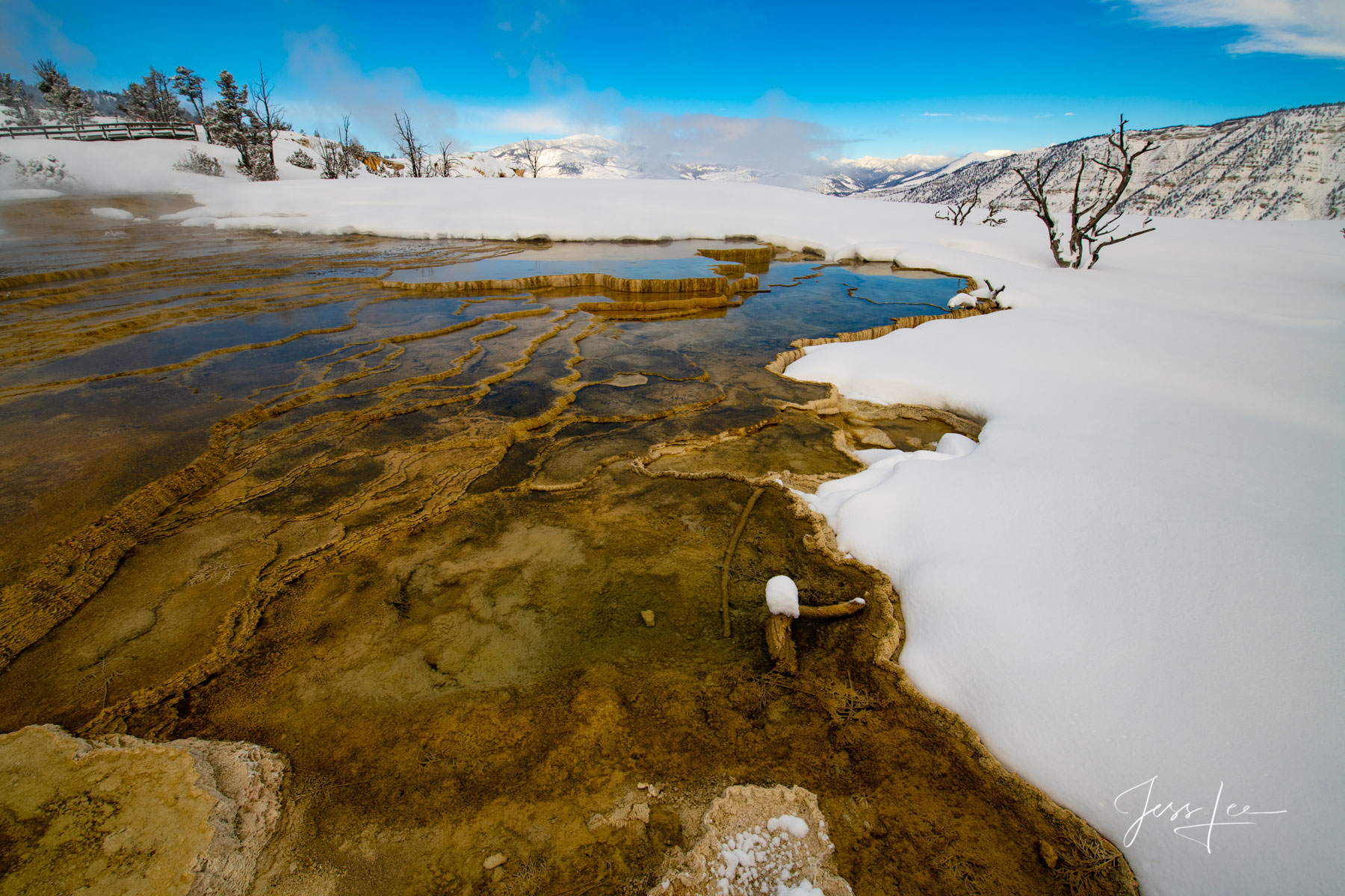 Yellowstone Photography, hot springs winter.  by Jess Lee
