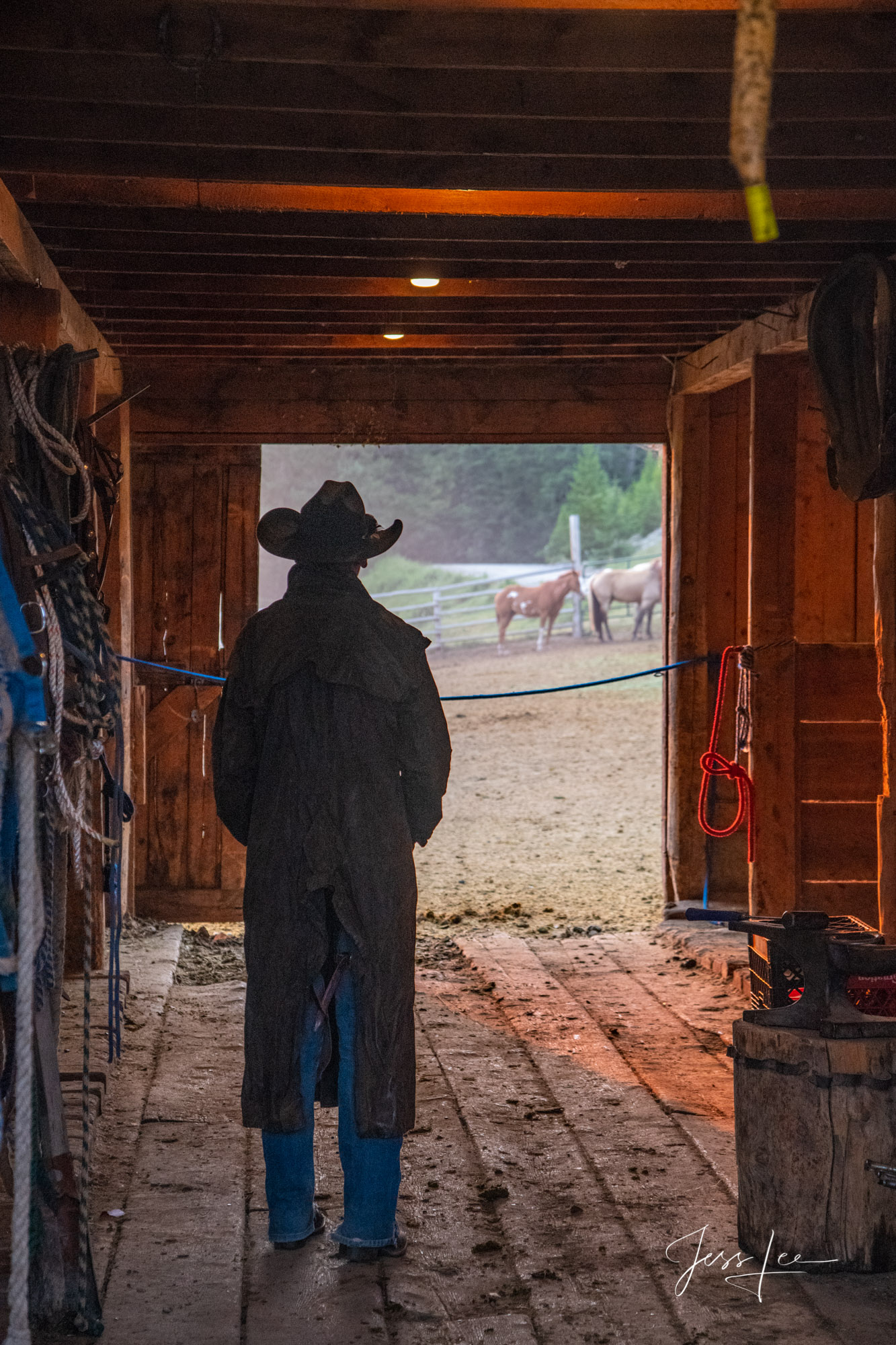 Fine Art Limited Edition Photography of Cowboys, Horses and life in the West. Young cowboy stops to think about what is coming...