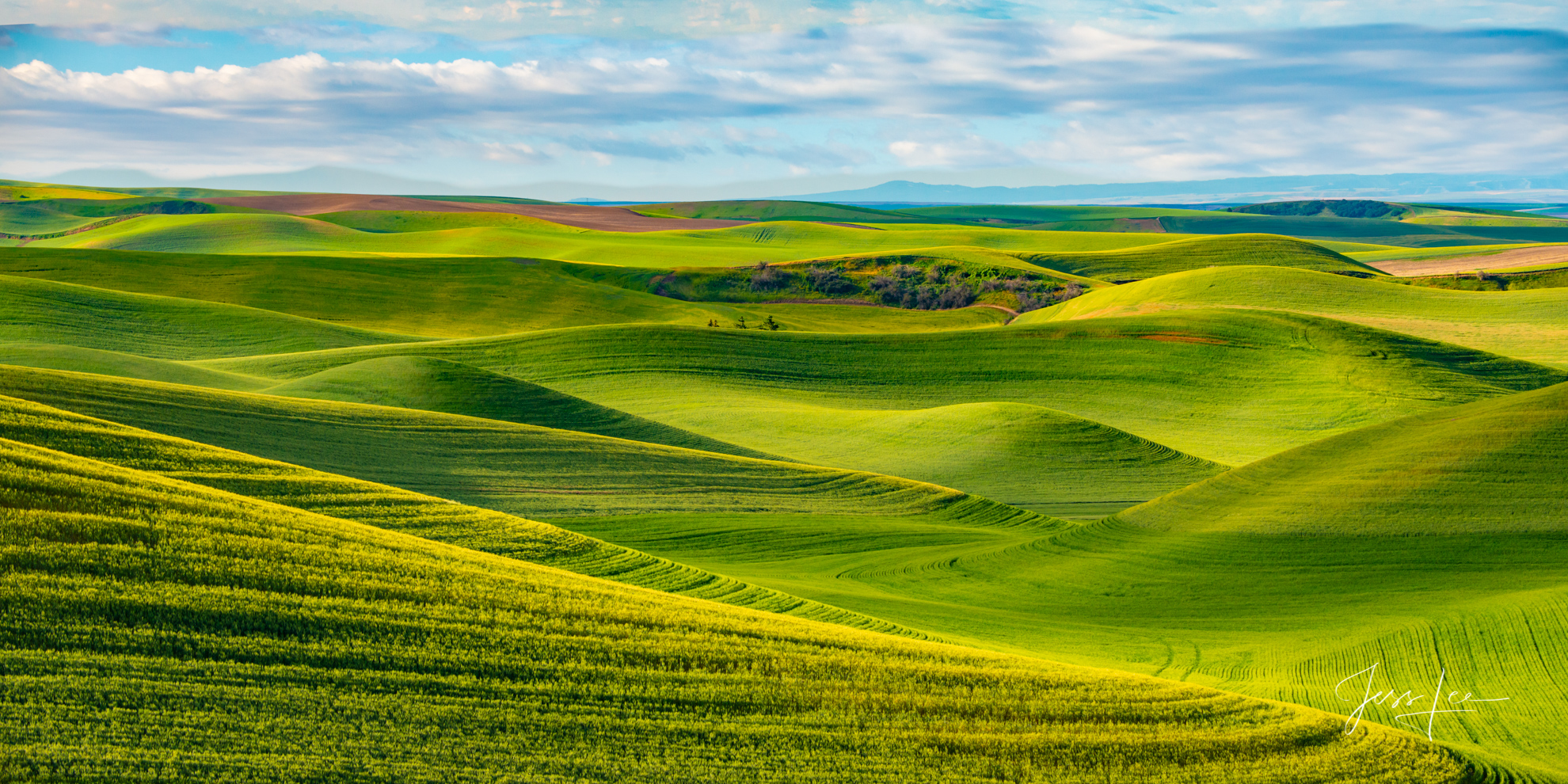 Waves of spring fields on the Palouse. Limited edition of 200 fine art prints.