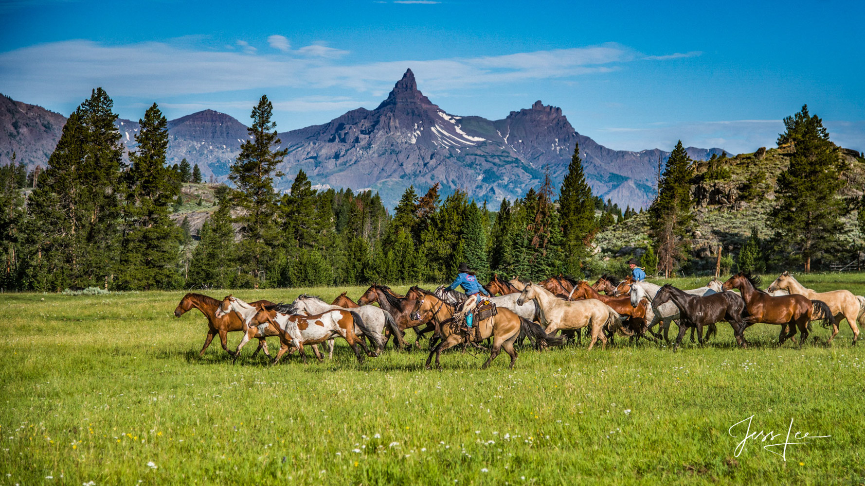 Fine Art Limited Edition Photography of Cowboys, Horses and life in the West. 250 Prints of Wyoming horse herd running on their...