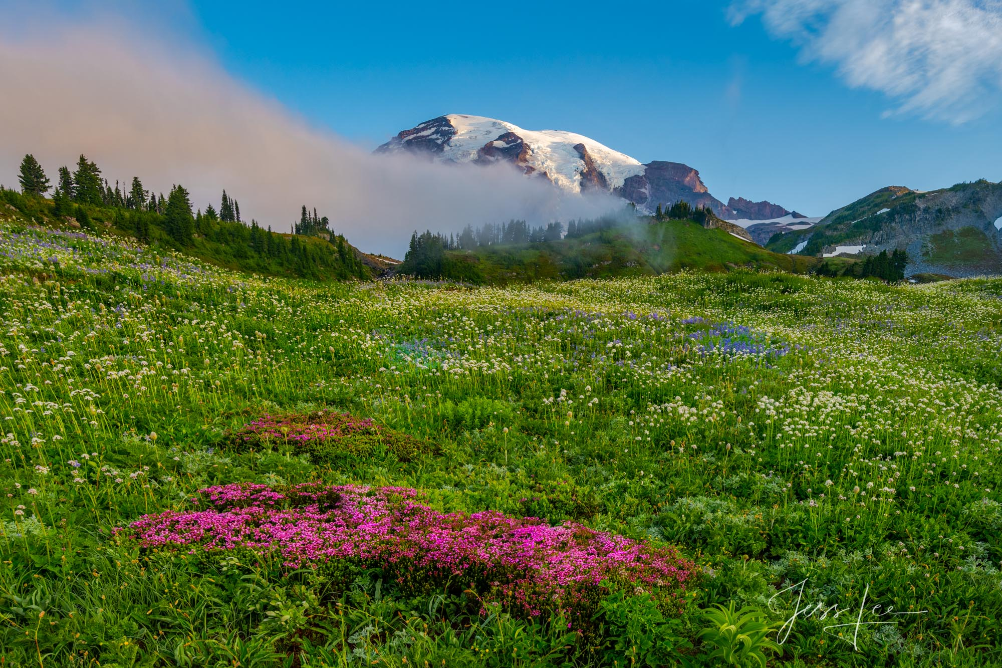 Beautify  your space  with Jess Lee's limited edition photography print, Red White, and Blue, from his Mount Rainier Gallery ....