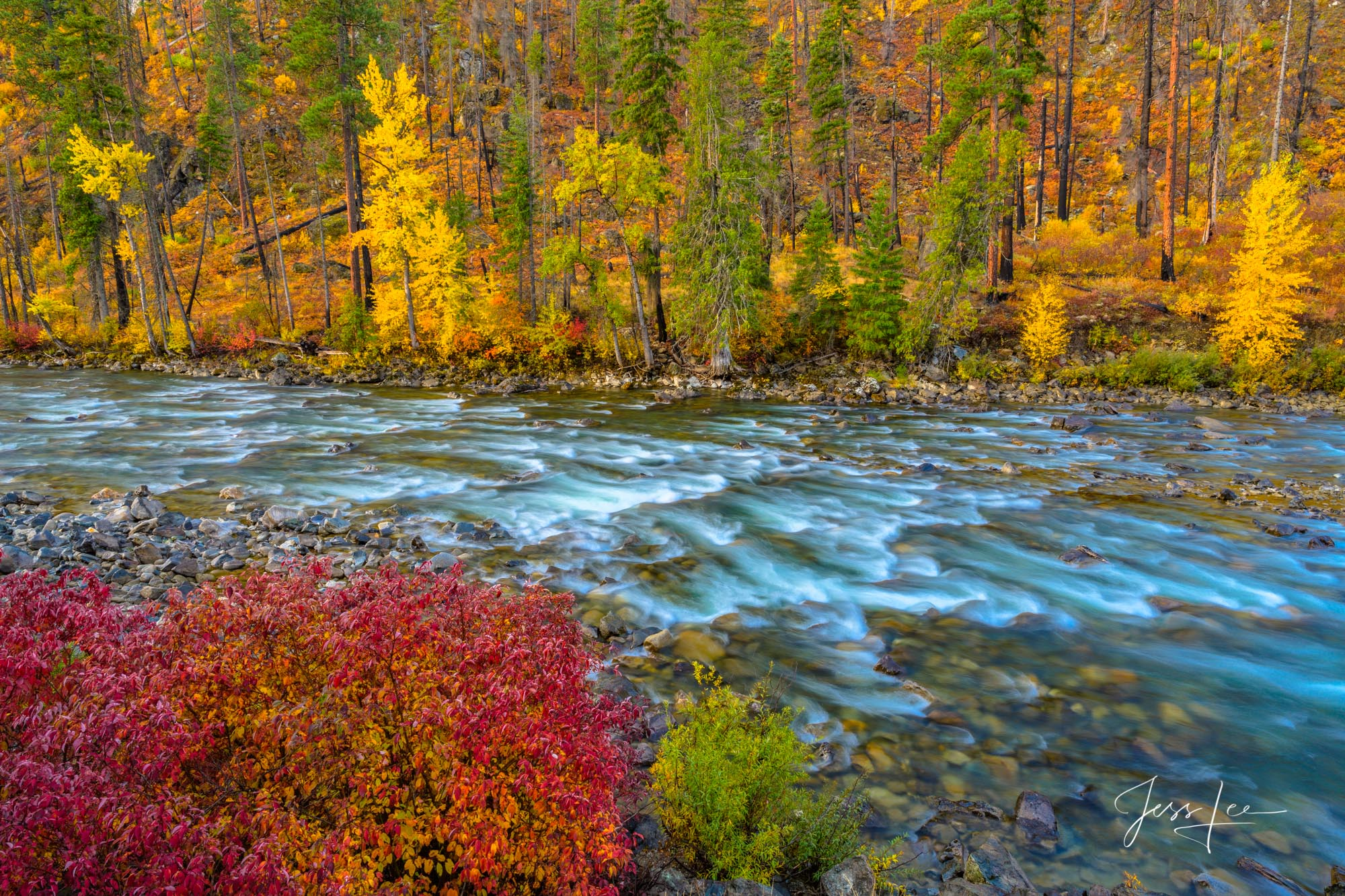 Fine Art Limited Edition Photography of Washington. Rush Time, Washington Autumn Landscapes, Rivers, waterways.This is part of...
