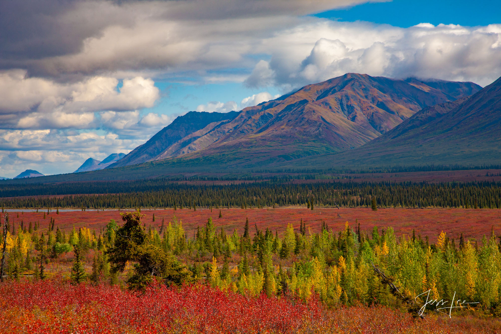 Talkeetna Hills in Alaska turning autumn colors.