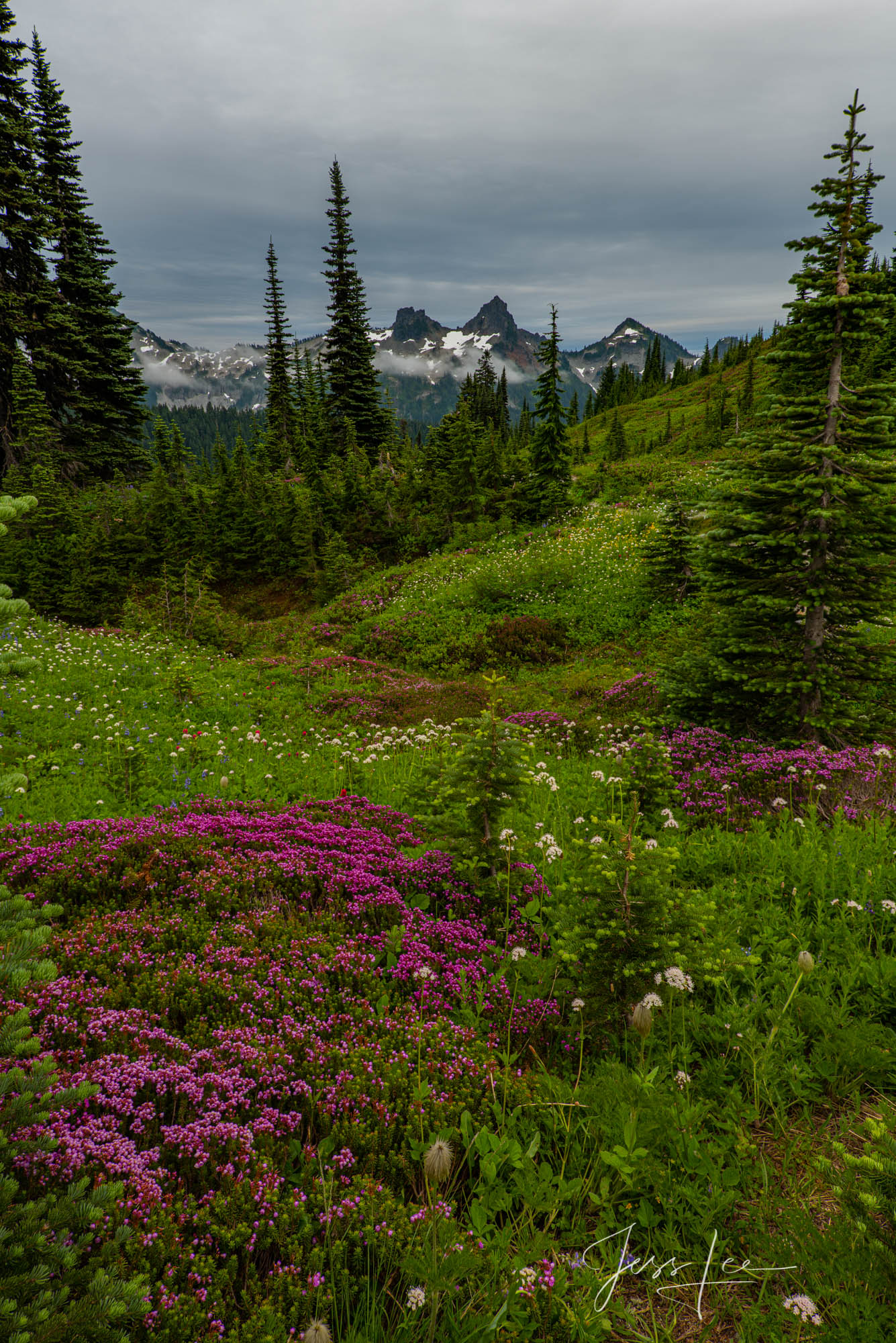 Beautify  your space  with Jess Lee's limited edition photography print, Summer High, from his Mount Rainier Gallery . Order...