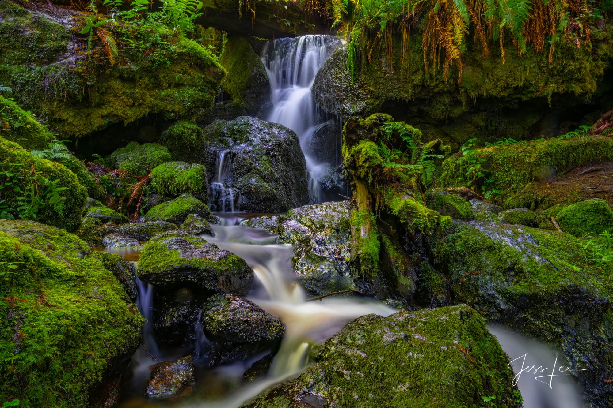 cowboy, western, waterfall, redwoods, california, photo