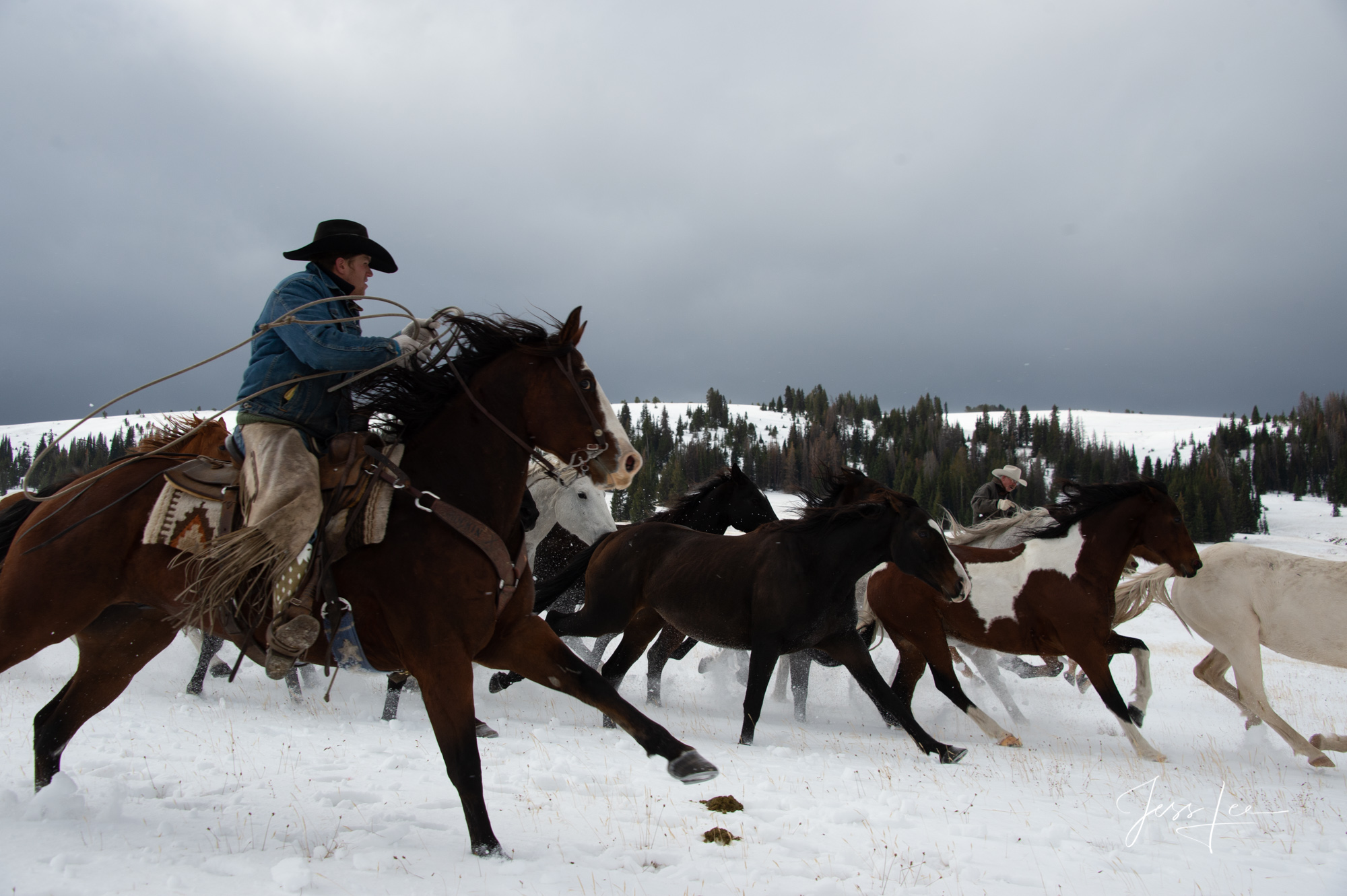 Fine Art Limited Edition Photography of Cowboys, Horses and life in the West. Cowboy wrangler gathering horses to bring them...
